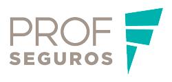 PROF SEGUROS
